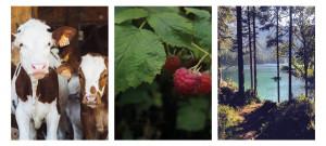 geliebtes landleben ueber mich bilder