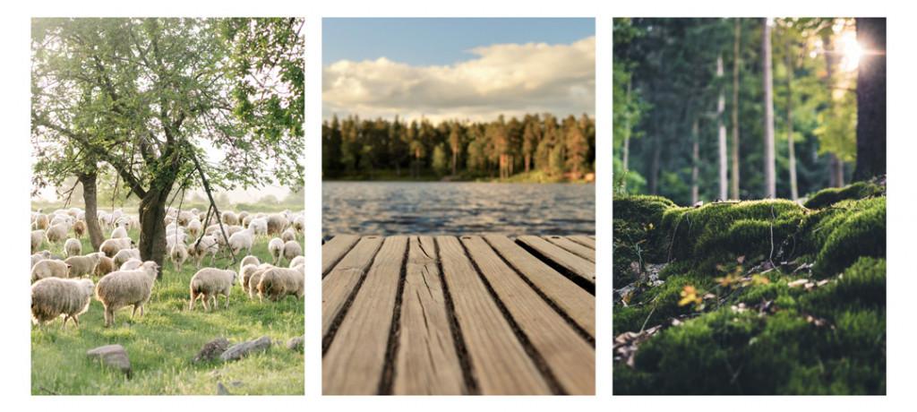 geliebtes landleben über mich bilder 2